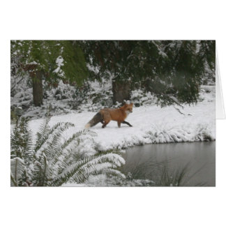 Red Fox in Winter Wonderland Card