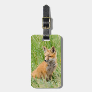 Red Fox Kit in grass near den Luggage Tags