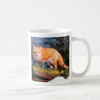 Red Fox on a log Coffee Mug