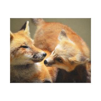 Red Fox Pair Canvas Print