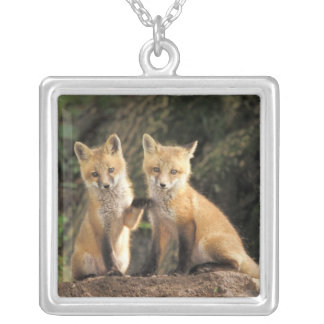 Red Fox pup in front of den Vulpes vulpes) Square Pendant Necklace