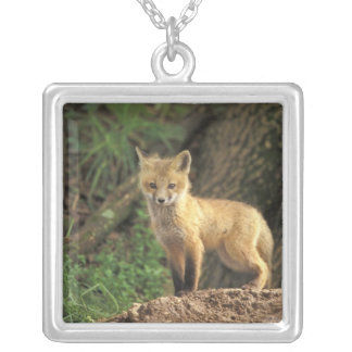 Red Fox pup in front of den (Vulpes vulpes) Square Pendant Necklace