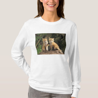 Red Fox pup in front of den Vulpes vulpes) T-Shirt