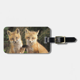 Red Fox pup in front of den Vulpes vulpes) Travel Bag Tag