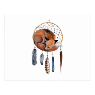 Red Fox Sleeping on Dreamcatcher Postcard