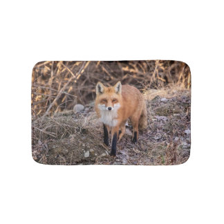 Red Fox up close and personal Bath Mat