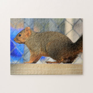 Red Foxtail Squirrel Puzzle Closeup