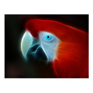 Red Fractal Parrot blue eyes Postcard
