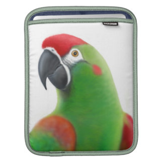 Red Fronted Macaw Parrot Rickshaw Sleeve iPad Sleeves