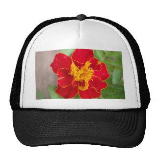 Red garden flower trucker hats