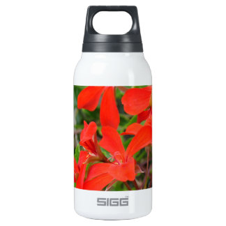 Red Geranium blooms 0.3L Insulated SIGG Thermos Water Bottle