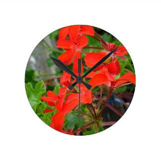 Red Geranium blooms Wallclock