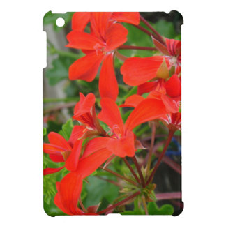 Red Geranium blooms iPad Mini Cover