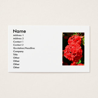 Red Geranium Flowers Business Card