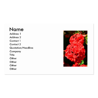 Red Geranium Flowers Business Card