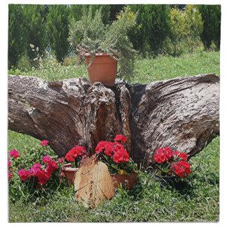 Red geraniums and tree root, El Camino, Spain Printed Napkin