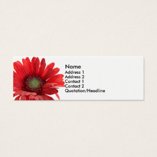 Red Gerber Daisy Contact Card