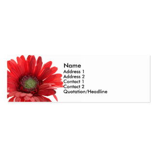 Red Gerber Daisy Contact Card Double-Sided Mini Business Cards (Pack Of 20)