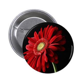 Red Gerber Daisy Pin