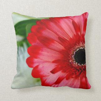 Red Gerbera Daisy Blooming Cushion