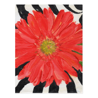 Red Gerbera Daisy on Zebra Postcard