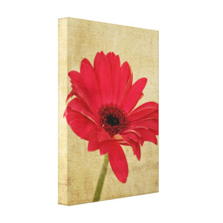 Red Gerbera Flower Canvas Canvas Print