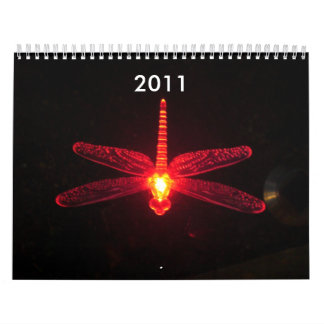 Red Glowing Dragonfly, Be Inspired, 2012 Calendar