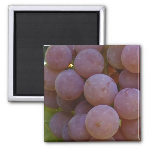 Red Grapes ~ magnet