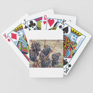 Red grapes on the vine . Tuscany, Italy Bicycle Playing Cards