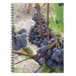 Red grapes on the vine with green leaves notebook