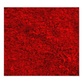 Red Grass Pattern Photographic Print