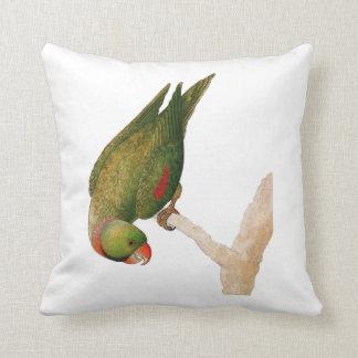 Red Green Parrot Throw Pillows