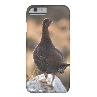 Red grouse barely there iPhone 6 case