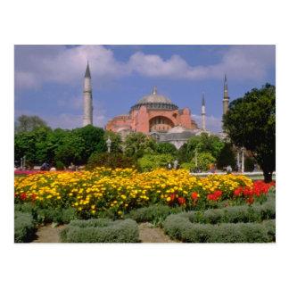 Red Hagia Sophia Museum, Turkey flowers Postcard