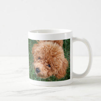 Red Headed Toy Poodle Coffee Mug
