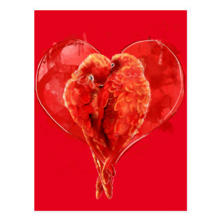 Red heart. Loving parrots. Postcard
