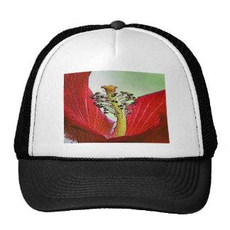 Red Hibiscus Cap
