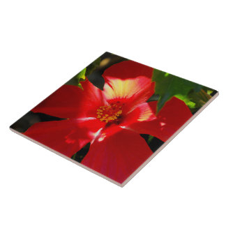 Red Hibiscus Flower in Sunlight Large Square Tile