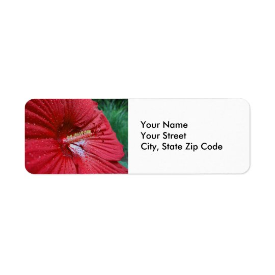Red Hibiscus With Raindrops Flower Photo Return Address Label