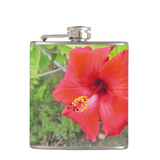 Red Hibiscus Yellow stigma Flasks