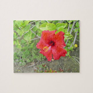 Red Hibiscus Yellow stigma Jigsaw Puzzle