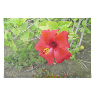 Red Hibiscus Yellow stigma Placemat