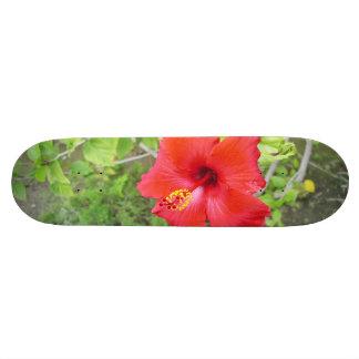 Red Hibiscus Yellow stigma Skate Decks