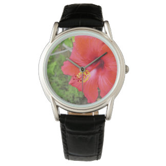 Red Hibiscus Yellow stigma Watch