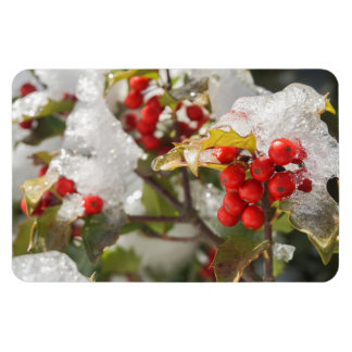 Red Holly Berries Snow and Ice Magnet