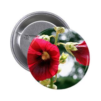 Red Hollyhock flowers in bloom Pins