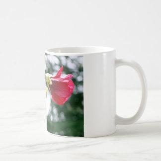 Red Hollyhock flowers in bloom Mugs
