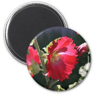 Red Hollyhock 6 Cm Round Magnet