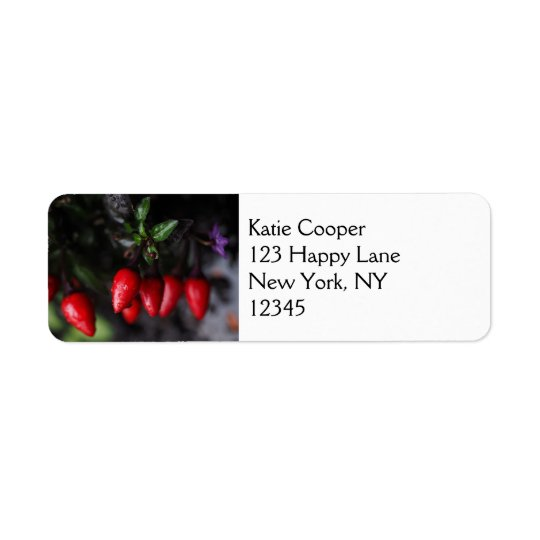 Red Hot Garden Salsa Chilli Peppers. Return Address Label