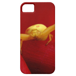 Red Hot Spider iPhone 5 Cover